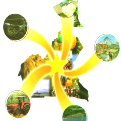 Cameroon Star
